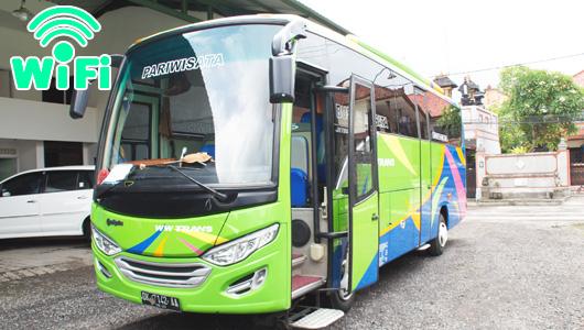 カーチャーター(WiFi付き)で使用するバス(35名様まで利用可)