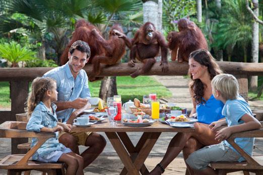 オランウータンと朝食を楽しむ家族