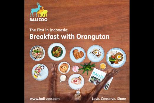 オランウータンと朝食メニュー