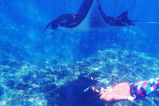 レンボンガン島で本格的なシュノーケリング