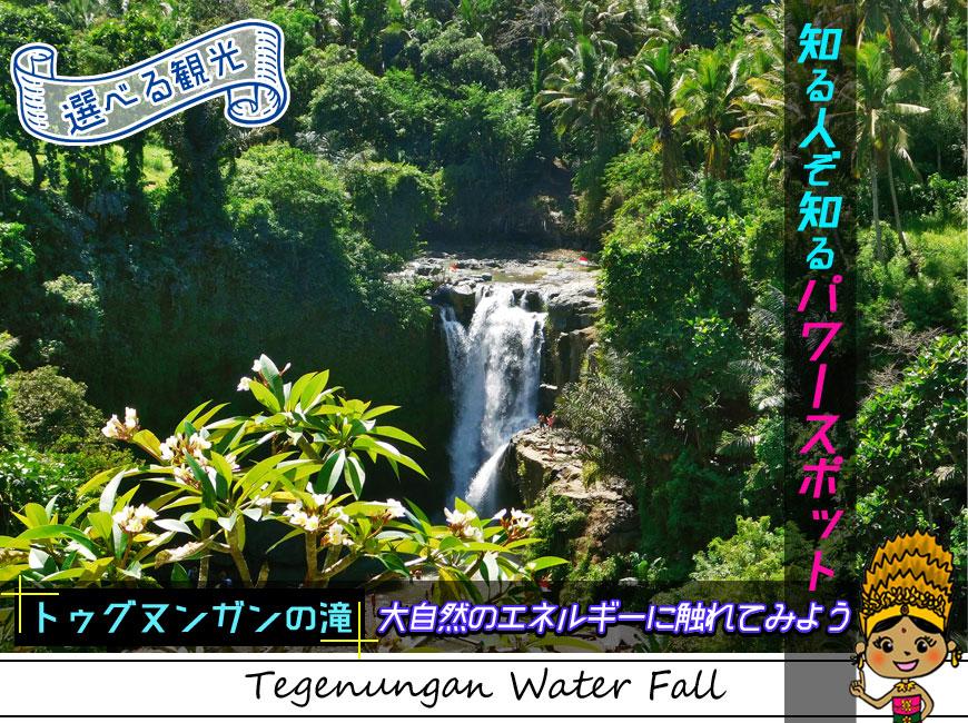選べる観光-知る人ぞ知るパワースポットのトゥグヌンガンの滝