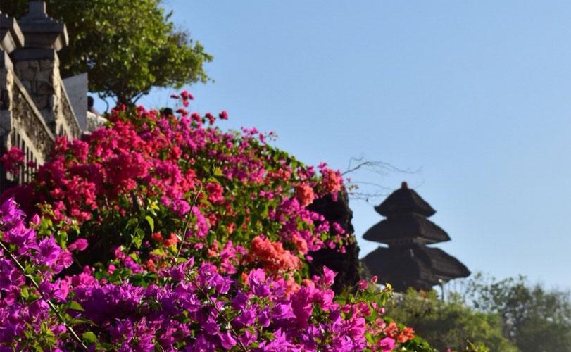 世界遺産ジャティルウィとタナロット寺院とウルワツ寺院ツアー