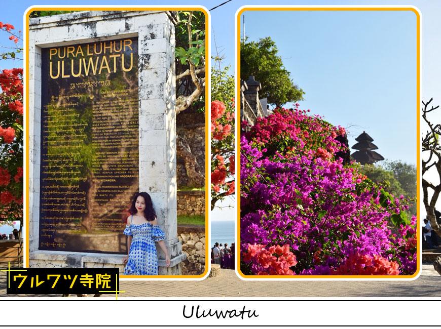 ウルワツ寺院のモニュメントと南国の花