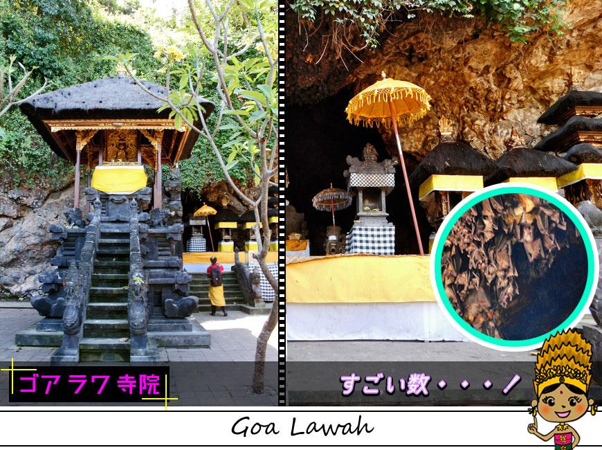 すごい数のコウモリがいる洞窟と寺院