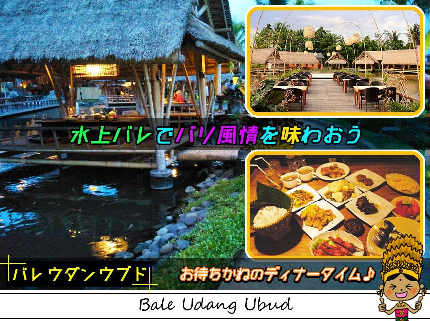 バレウダンウブドの水上バレでインドネシア料理のディナー
