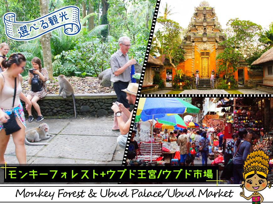 選べる観光-可愛いお猿さんがいるモンキーフォレストとウブド市場やウブド王宮を巡る