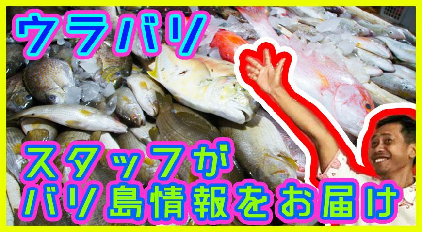 ジンバランの魚市場を紹介するスタッフ