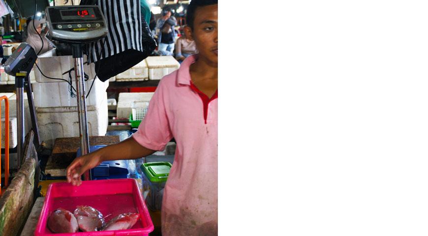 3匹の赤い魚を計るスタッフと1kgと表示された計り台
