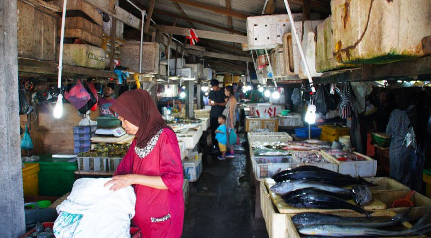 沢山の魚と作業する女性