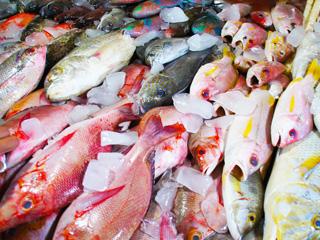 ジンバランの魚市場