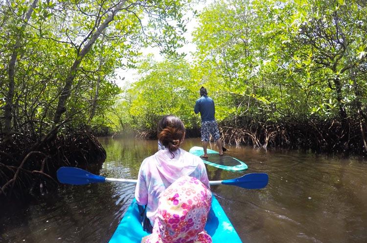 レンボンガン島のマングローブをSUPとシーカヤックで探検する様子